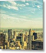 New York City Skyline With Central Park Metal Print