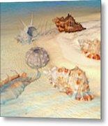 Ocean Shells Metal Print