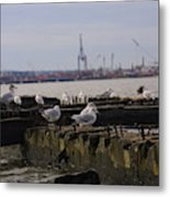 Old New Jersey Pier Statue State Park II Metal Print