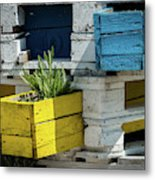 Old Pallet Painted White, Blue And Yellow Used As Flower Pot Metal Print