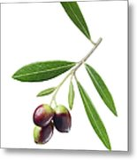 Olives On Branch Metal Print