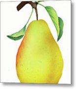 One Yellow Juicy Pear Metal Print