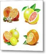 Orange Grapefruit Lemon Watercolor Fruit Illustration Metal Print