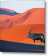 Oryx Antelope Metal Print