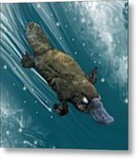 P Is For Platypus Metal Print