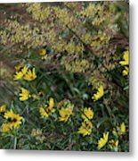 Painted Fall Flowers Metal Print