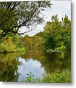 Painted Fall On The Back Pond Metal Print