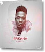 Pakana Artwork Metal Print