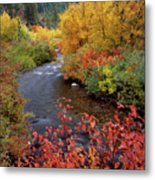 Palisades Creek Canyon Autumn Metal Print