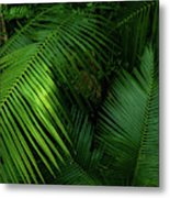 Palm Saturday Metal Print