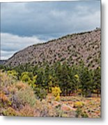 Panorama Of Cliff Dwelling And Fall Cottonwoods In Frijoles Canyon - Bandelier National Monument  Metal Print