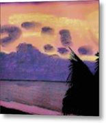 Pastel Palm Tree Sunrise Metal Print