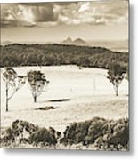 Pastoral Plains Metal Print