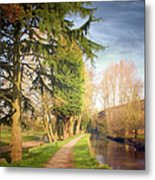Path Besides Canal In Bute Park Metal Print