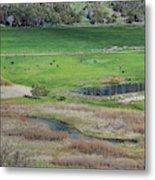 Peaceful Farm In Durango Metal Print