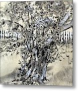 Pear Tree And Pickets Metal Print