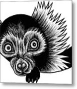Peeking Lemur - Ink Illustration Metal Print