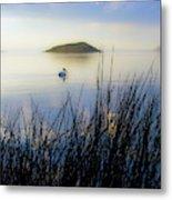 Pelican On Klamath Lake Metal Print