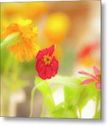 Pick Me Up Flowers Metal Print