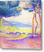 Pines Along The Shore - Digital Remastered Edition Metal Print