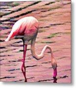 Pink Flamingo Two Metal Print