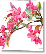 Pink Flowering Tree Blossoms Metal Print