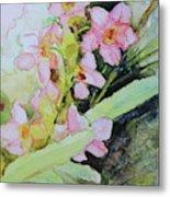 Pink Moth Orchids II Metal Print