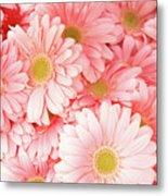 Pink Palette Metal Print