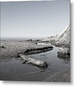 Point Arena Beach California Metal Print