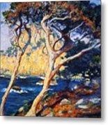 Point Lobos Trees 1919 Metal Print