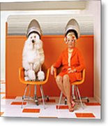 Poodle And Senior Woman Sitting Under Metal Print