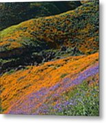 Poppies Bluebells And Rolling Hills Metal Print