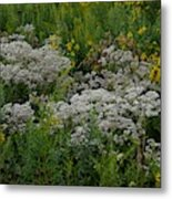 Prairie Bouquet  Metal Print