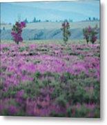 Purple Grain Metal Print