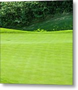 Putting Green And Flag At A Golf Course Metal Print
