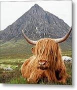 Quintessential Scotland Metal Print