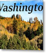 Randle Washington In Fall 02 Metal Print