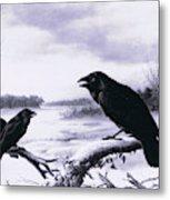 Ravens In Winter Metal Print