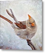 Red Bill Beauty Metal Print