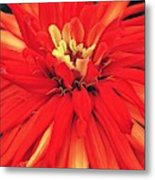 Red Bliss Metal Print
