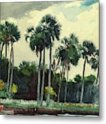 Red Shrt, Homosassa, Florida Metal Print