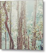 Relaxing  In Nature By Stretching And Metal Print