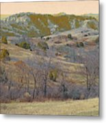 Reverie Of Dakota West Metal Print