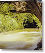River Banks In Trelawny Jamaica Metal Print