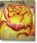 Rose Painting Metal Print