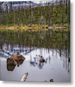 Round Lake Reflection Metal Print