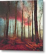 Ruby Red Evening Metal Print