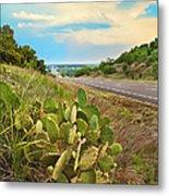 Rural Texas Highway, Prickly Pear Metal Print