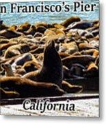 San Francisco's Pier 39 Walruses 1 Metal Print