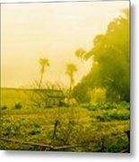 Sapa Landscape, Vietnam Metal Print